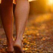 Imagen tomada de marygodiva.wordpress.com