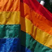Foto: telemundo33.com
