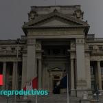 [NP] #Elecciones2021: Mayoría de propuestas no reconocen los derechos sexuales y reproductivos como derechos humanos